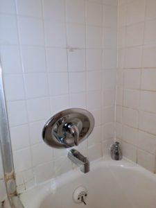 Thome Plumbing bathroom plumbing services.